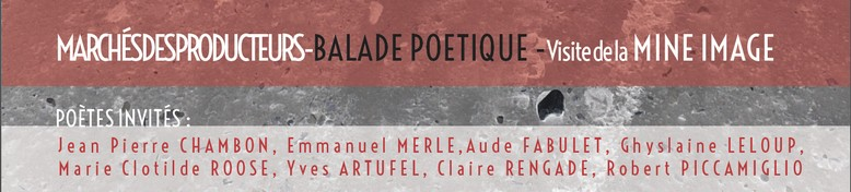 Festival de poésie 2015